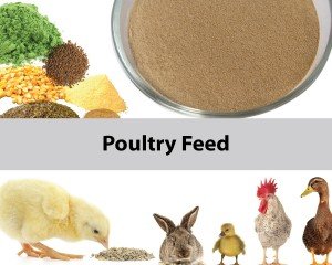 mixer for poultry feed