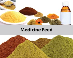 Medicine Feed