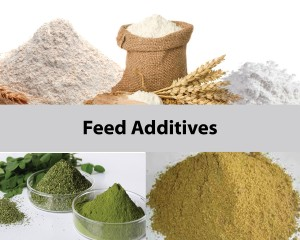 mixer for feed additives